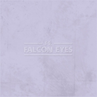 Тканевый фон Falcon Eyes BCP-08 ВС-2770